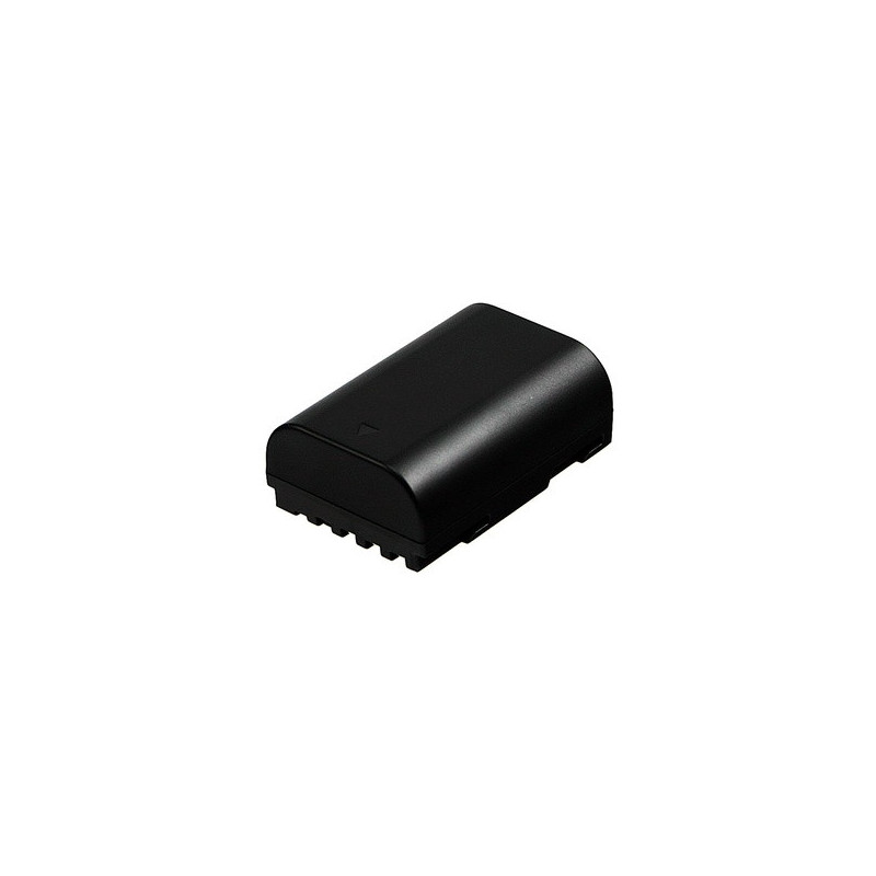 2-POWER DBI9942A Batteria per fotocamera/videocamera Ioni di Litio 1600 mAh
